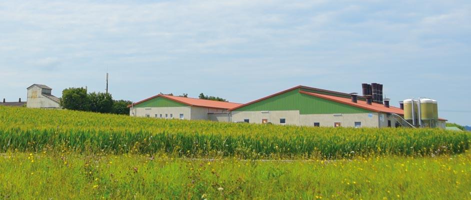 Geflügelhof wellhöfer